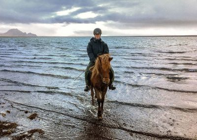 Horse riding with sea in the background
