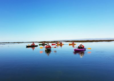Small group kayak tour in Iceland